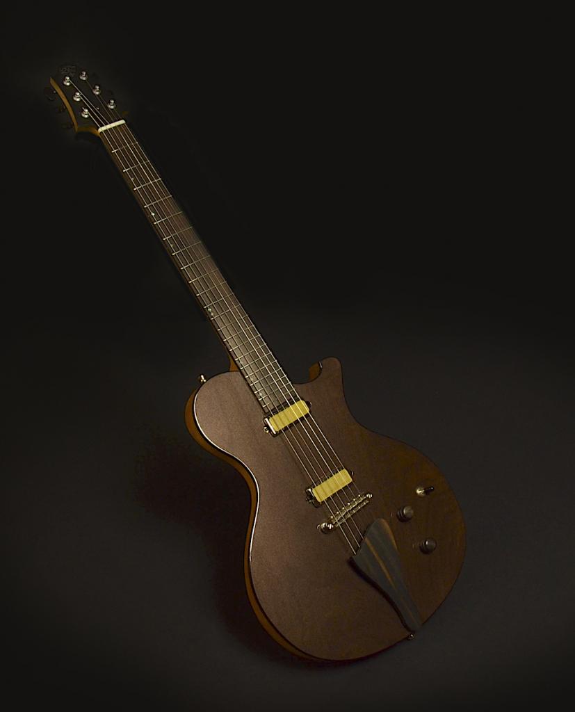 Senior Leo Guitars