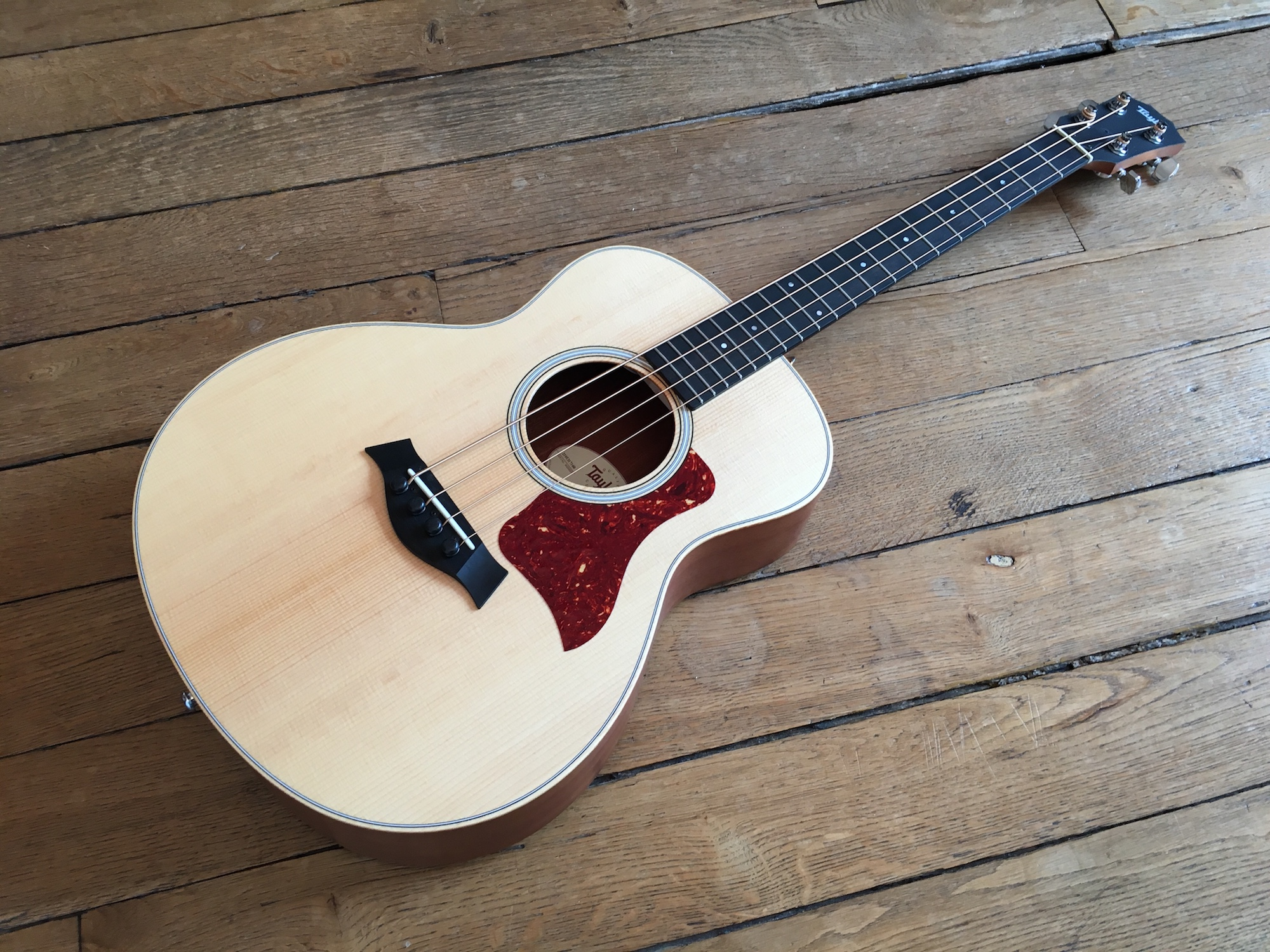 guitar review gs mini bass taylor guitars small format huge sound. Black Bedroom Furniture Sets. Home Design Ideas